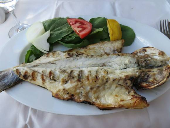 Fresh sea bass on Princes' Islands.